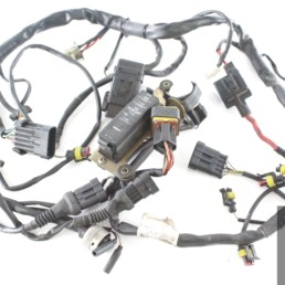 cablaggio impianto elettrico monster 750 900 1996 2000