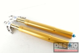 Forche forcelle anteriori ohlins racing FG9650 FG 9560 ducati 916 RS