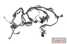 Impianto elettrico cablaggio completo Ducati Panigale 1199 S ABS